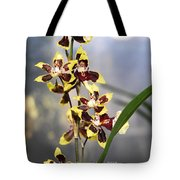 Red And White Orchid  Tote Bag