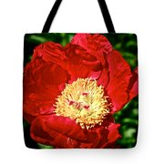 Red And Yellow Tote Bag