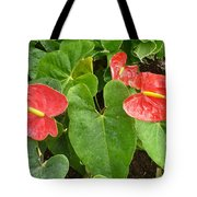 Red Anthurium Tote Bag