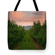 Red Apple Sunset Tote Bag by Mike  Dawson