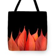 Red Autumn Leaves On Edge Tote Bag
