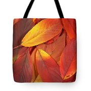 Red Autumn Leaves Pile Tote Bag