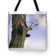 Red-bellied Woodpecker - Male Tote Bag