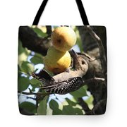 Red-bellied Woodpecker - Yummy Pears Tote Bag