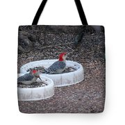 Red Bellied Woodpeckers Male And Female Tote Bag
