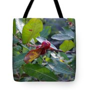 Red Berry  Tote Bag