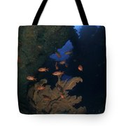 Red Bigeye Fish And Sea Fan In An Tote Bag by Mathieu Meur