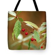 Red Bird Berries Of Fall Tote Bag