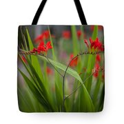 Red Blade Symmetry Tote Bag