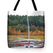 Red Boat Reflection Tote Bag