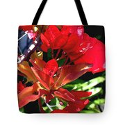 Red Bougainvillea Tote Bag