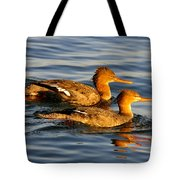 Red Breasted Mergansers Tote Bag