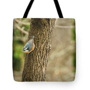 Red-breasted Nuthatch Tote Bag