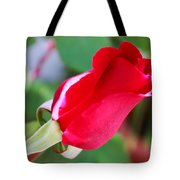 Red Bud Tote Bag