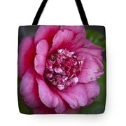 Red Camellia Tote Bag by Teresa Mucha