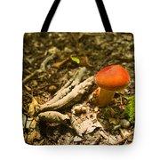 Red Caped Mushroom 1 Tote Bag