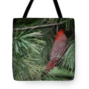 Red Cardinal In Green Pine Tote Bag