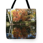 Red Cedar Reflections Tote Bag