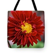 Red Dahlia Unfurled Tote Bag