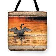 Red Dawn Swan Framed In Old Window Frame Tote Bag