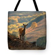 Red Deer Calf Tote Bag