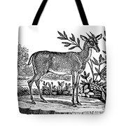Red Deer Tote Bag by Granger