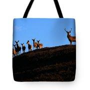 Red Deer Group Tote Bag