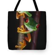 Red-eyed Tree Frog Agalychnis Callidryas Tote Bag