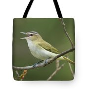 Red-eyed Vireo Vireo Olivaceus Calling Tote Bag