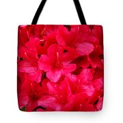 Red Floral Art Prints Rhododendron Flowers Rhodies Tote Bag by Baslee Troutman