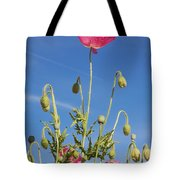 Red Flower Against Blue Sky Tote Bag