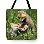 Red Fox Babies - D006647 Tote Bag