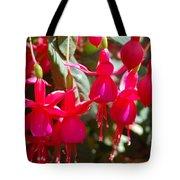 Red Fuchsias Tote Bag