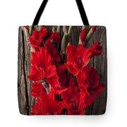 Red Gladiolus Tote Bag