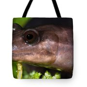 Red Hills Salamander Tote Bag