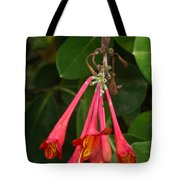 Red Honeysuckle Blossoms 1 Tote Bag