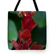 Red Inferno Tote Bag