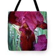 Red Iris Duo Tote Bag