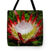 Red King Protea Tote Bag