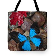 Red Leaf And Blue Butterfly Tote Bag