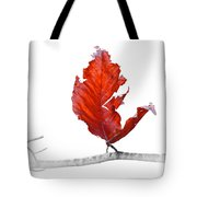 Red Leaf Of Autumn On White Tote Bag