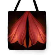 Red Liliy Flowers Scent The Night Tote Bag