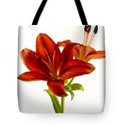 Red Lily Number One Square Tote Bag