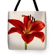 Red Lily Number Three Tote Bag