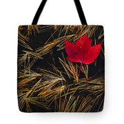 Red Maple Leaf On Pine Needles In Pool Tote Bag by Mike Grandmailson