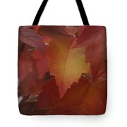 Red Maple With A Splash Of Gold Tote Bag