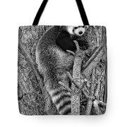 Red Panda 2 Monochrome Tote Bag