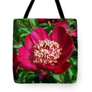Red Peony Flowers Series 2 Tote Bag