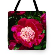 Red Peony Flowers Series 3 Tote Bag
