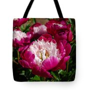 Red Peony Flowers Series 4 Tote Bag